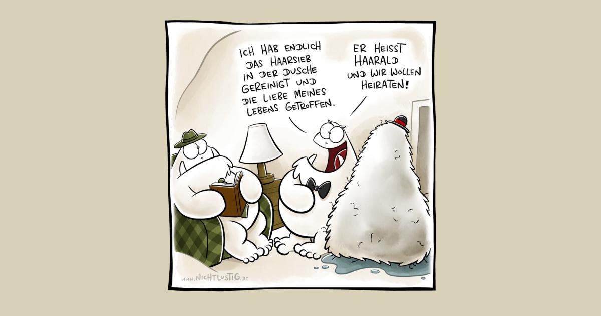 http://joscha.com/data/media/cartoons/share/200630.jpg